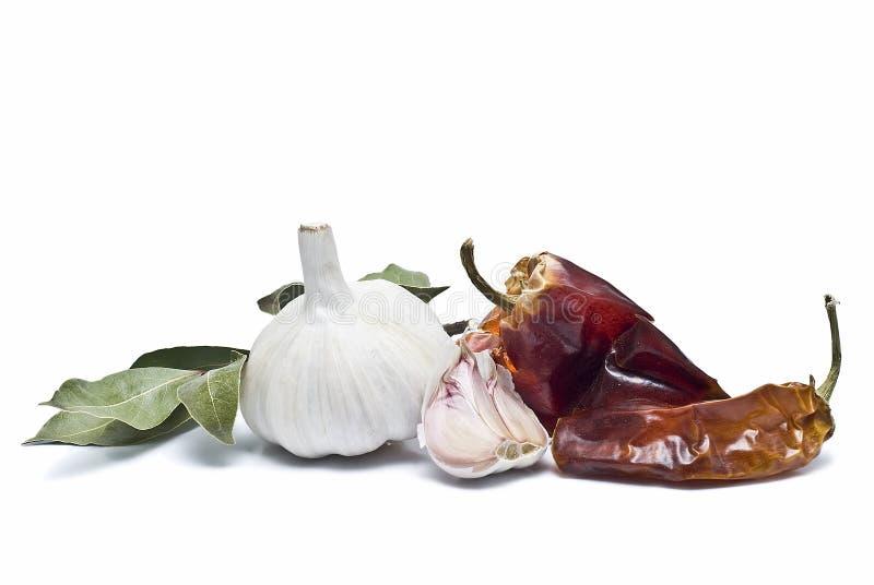 某些西班牙语香料 免版税库存照片