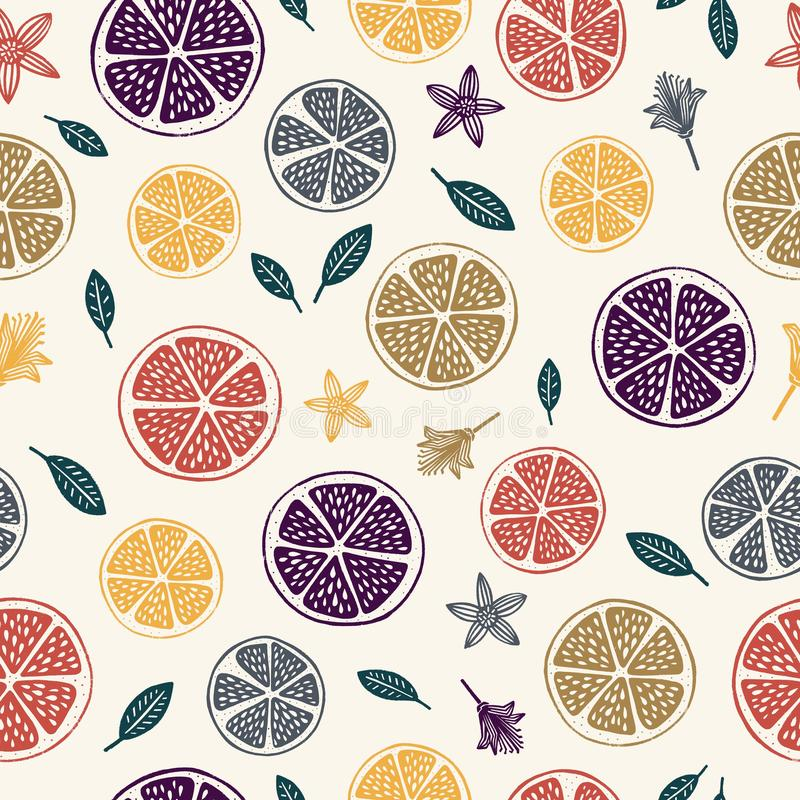 柑桔水果无缝模式 皇族释放例证
