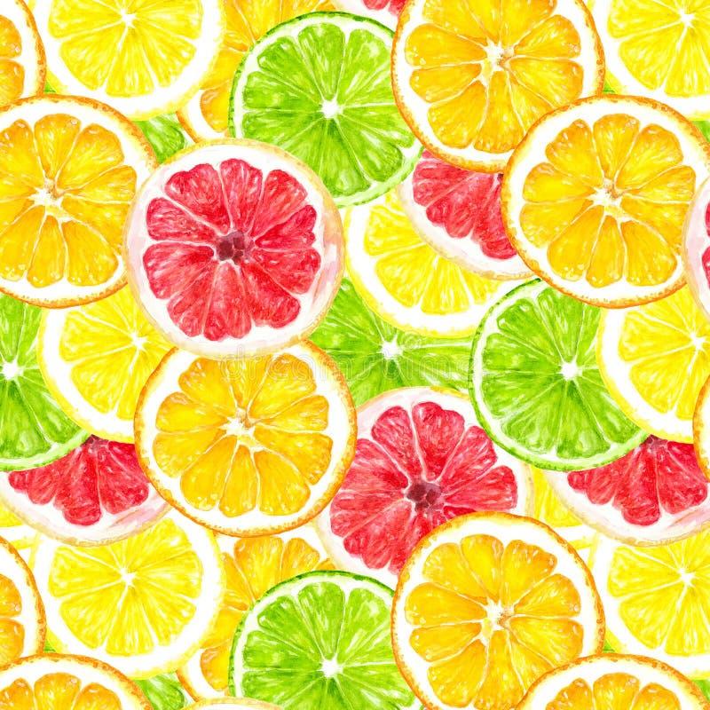 柑桔slicehand得出无缝的水彩织品样式 库存图片