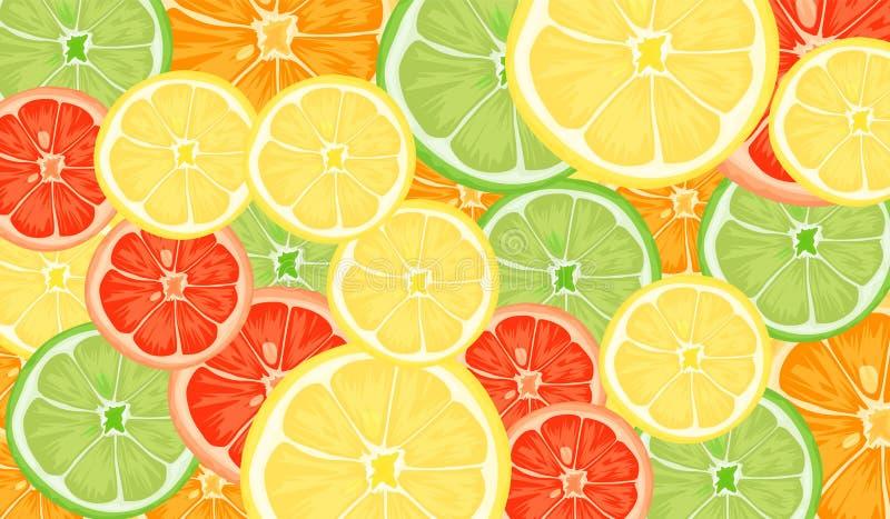 柑橘切片柠檬、桔子、石灰和葡萄柚 传染媒介例证样式背景 库存例证