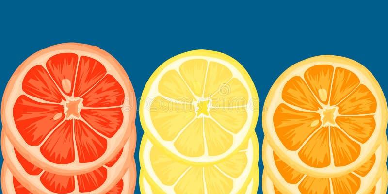 柑橘切片柠檬,桔子,葡萄柚 在蓝色背景的传染媒介例证 向量例证