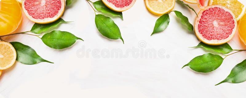 柑橘切片桔子、柠檬和葡萄柚与绿色叶子,横幅网站的 库存照片
