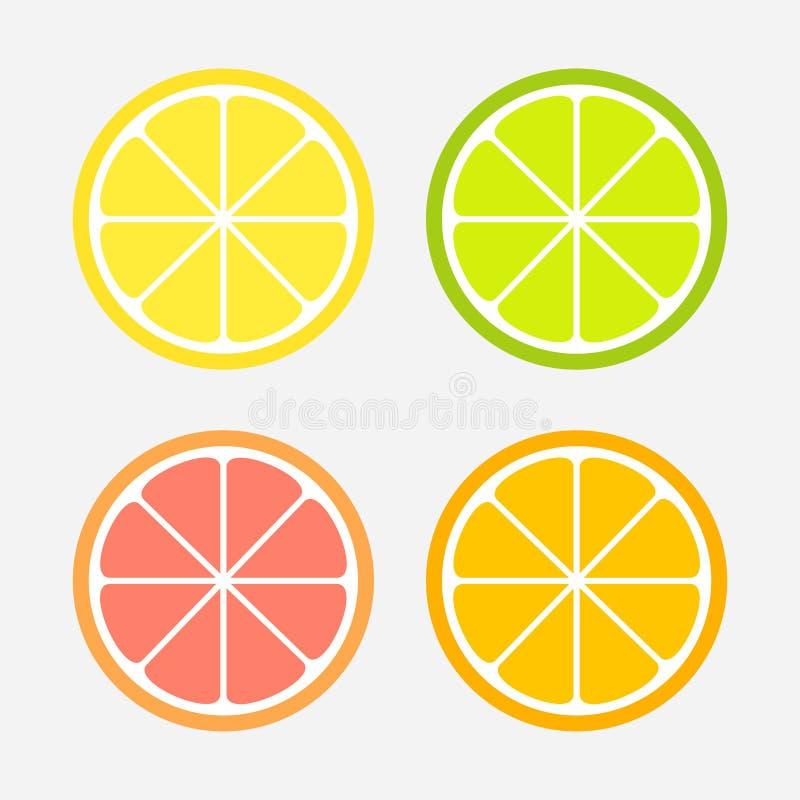 柑橘切片集合:柠檬、桔子、石灰和葡萄柚 库存例证