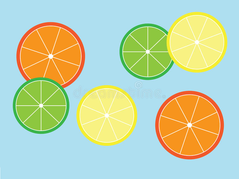 柑橘切片 库存照片