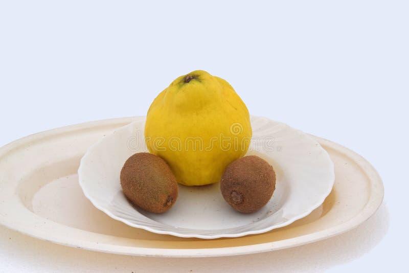 柑橘和两个猕猴桃 免版税库存照片