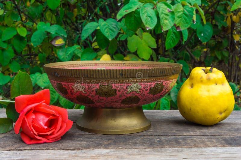 Download 柑橘和红色玫瑰 库存图片. 图片 包括有 本质, 庭院, 膳食, 上升了, 水多, 黄色, 食物, 葡萄酒 - 62533657