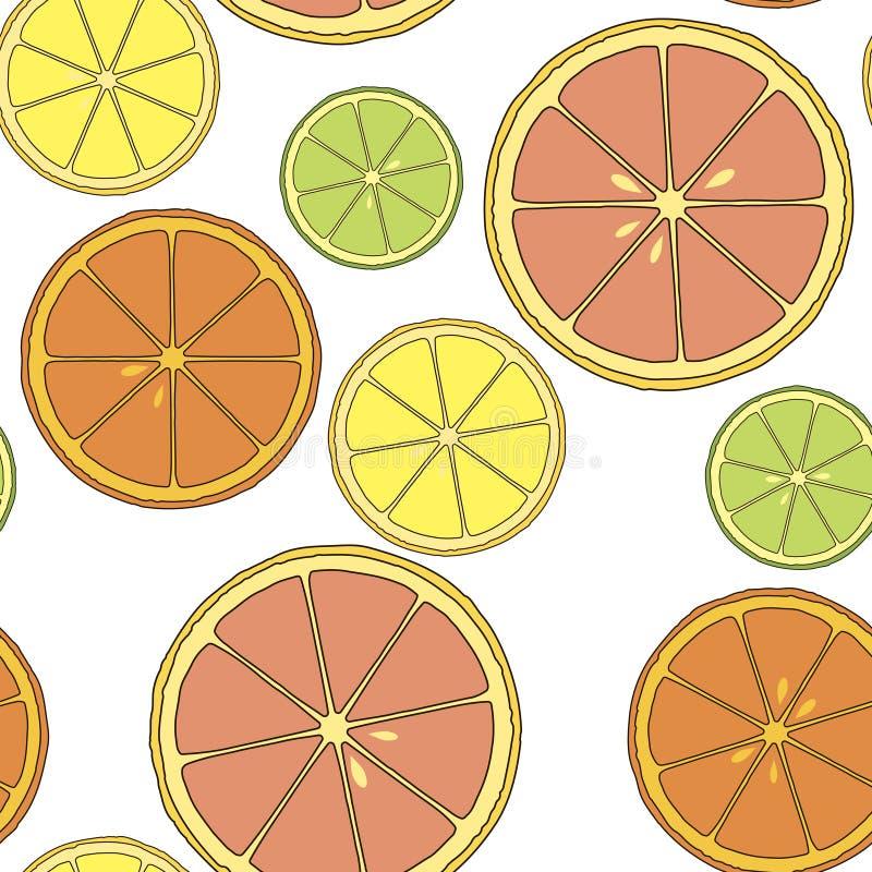 柑橘无缝的样式用柠檬、石灰、桔子和葡萄柚 向量 向量例证