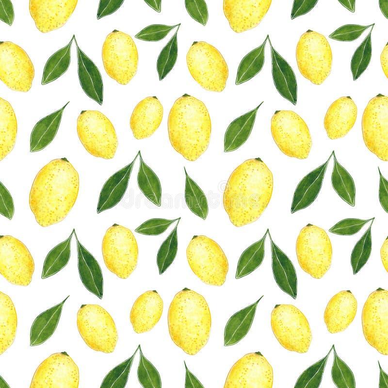 柑橘无缝的样式由柠檬制成 手拉的水彩例证 皇族释放例证