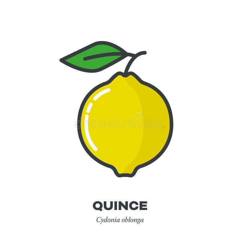 柑橘果子象,填装了概述样式传染媒介 向量例证