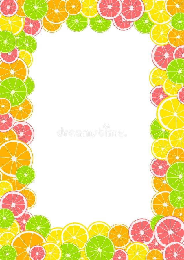 柑橘框架、边界与空间文本的或照片 夏天印刷品组成由黄色柠檬、绿色石灰、粉红色葡萄柚和橙色o 库存例证