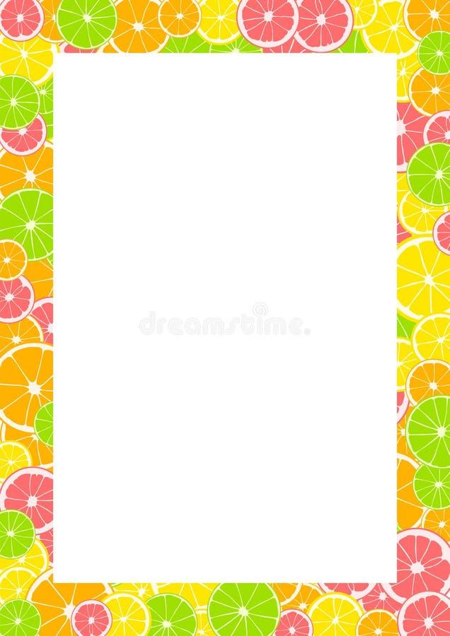 柑橘框架、边界与空间文本的或照片 夏天印刷品组成由黄色柠檬、绿色石灰、粉红色葡萄柚和橙色o 向量例证
