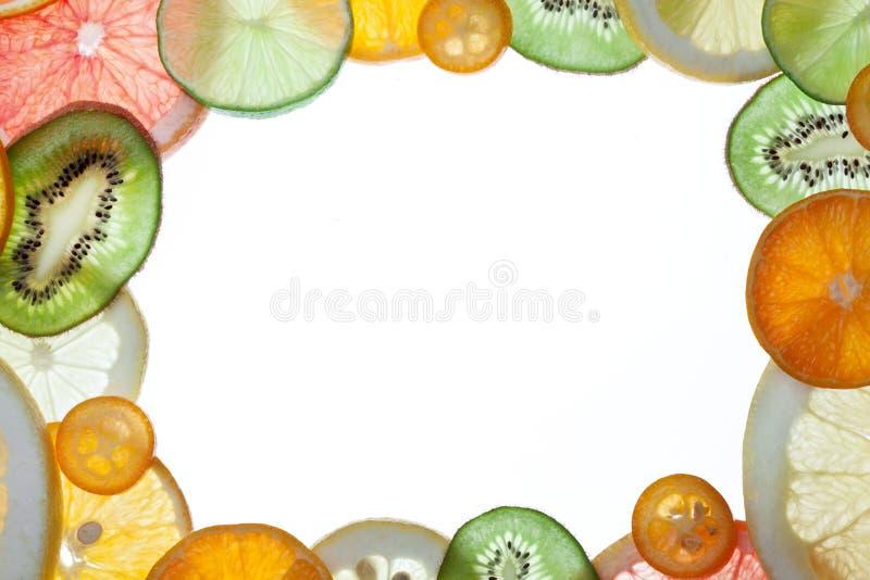 柑橘框架片式 免版税库存照片