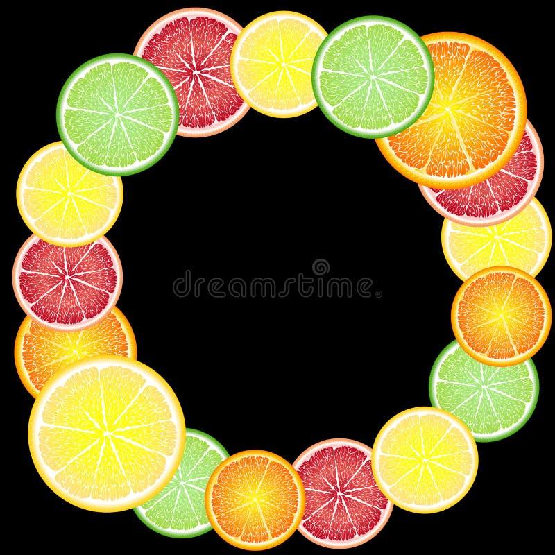 柑橘水果圈子快乐,明亮的框架:桔子,柠檬,葡萄柚,石灰 ?? 皇族释放例证