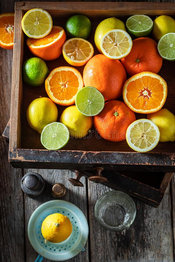 柑橘水果的新混合 库存照片