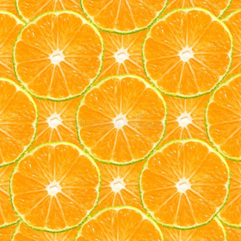 柑橘片式 免版税库存照片