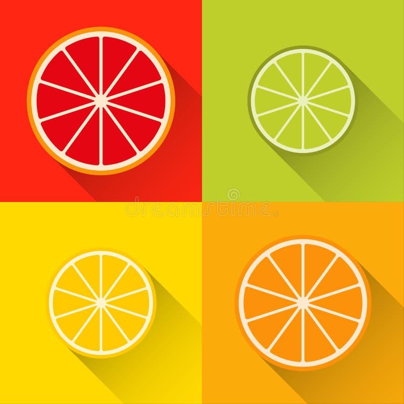 """柑橘的汇集切象†""""葡萄柚,石灰,柠檬 皇族释放例证"""