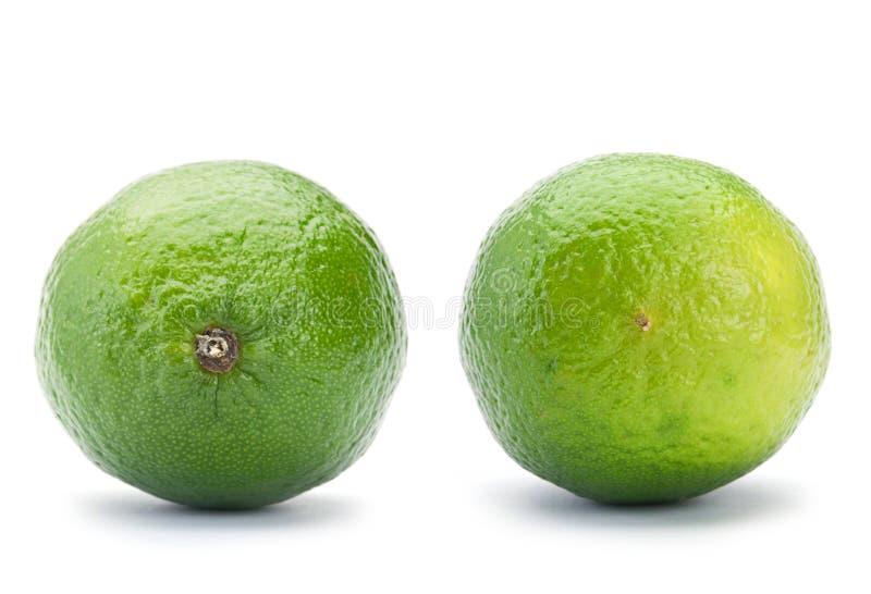 柑橘石灰 免版税库存图片