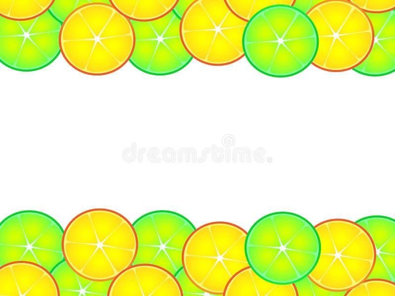 柑橘背景美妙的设计  向量例证
