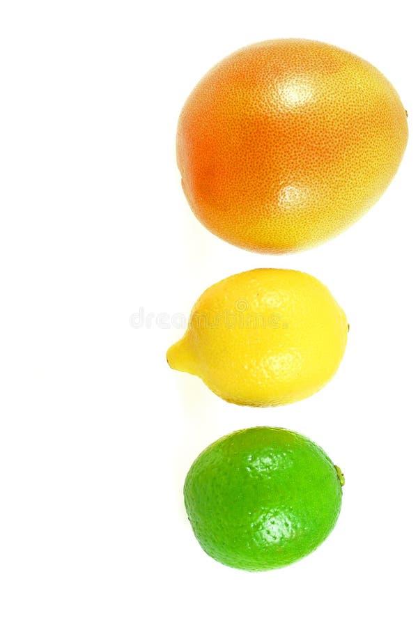 柑橘轻的业务量 免版税库存图片