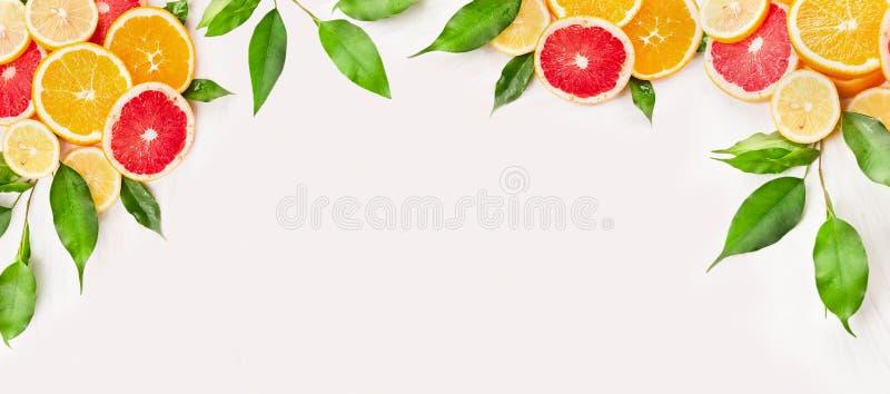 柑橘水果切与在白色木背景,横幅的绿色叶子 免版税库存照片