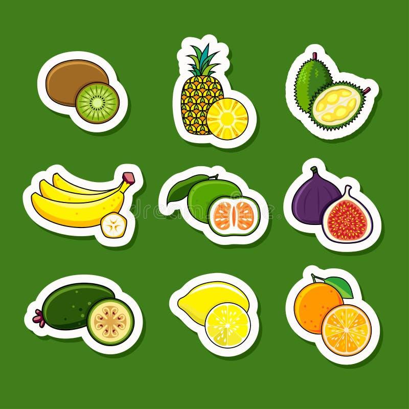 柑橘水果设置了热带 向量例证