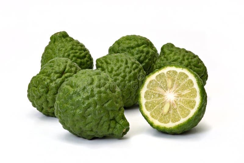 柑橘hystrix,在白色背景的香柠檬果子 免版税库存图片
