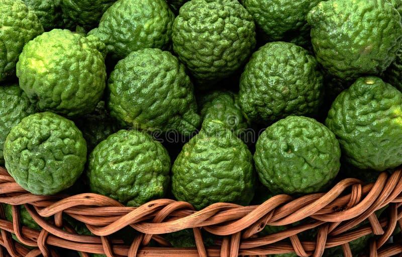 柑橘hystrix,草药的香柠檬果子 免版税库存照片