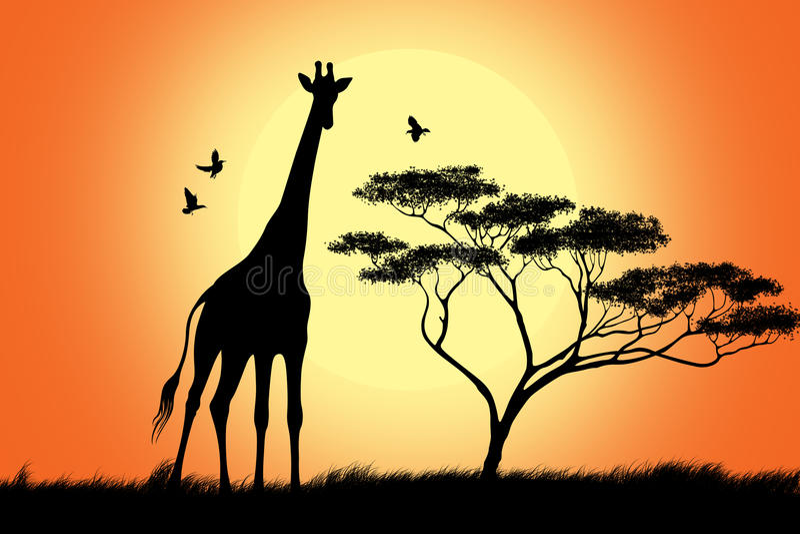 染黑长颈鹿剪影 库存例证