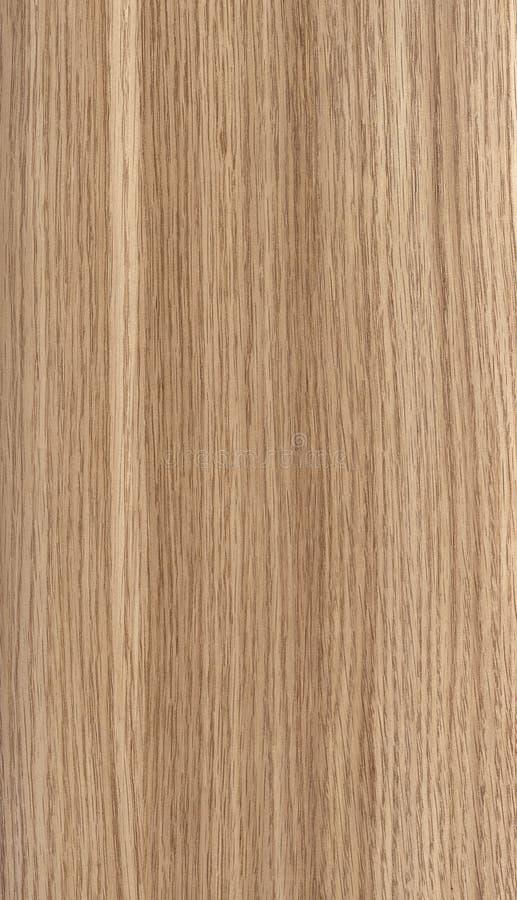 柚木树木头纹理 免版税库存图片