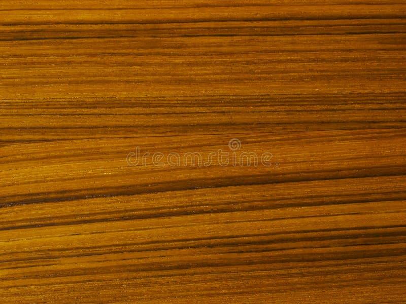 柚木树纹理木头 免版税图库摄影