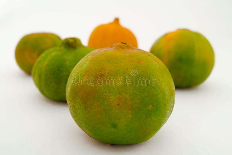 柠檬、普通话和桔子 库存图片