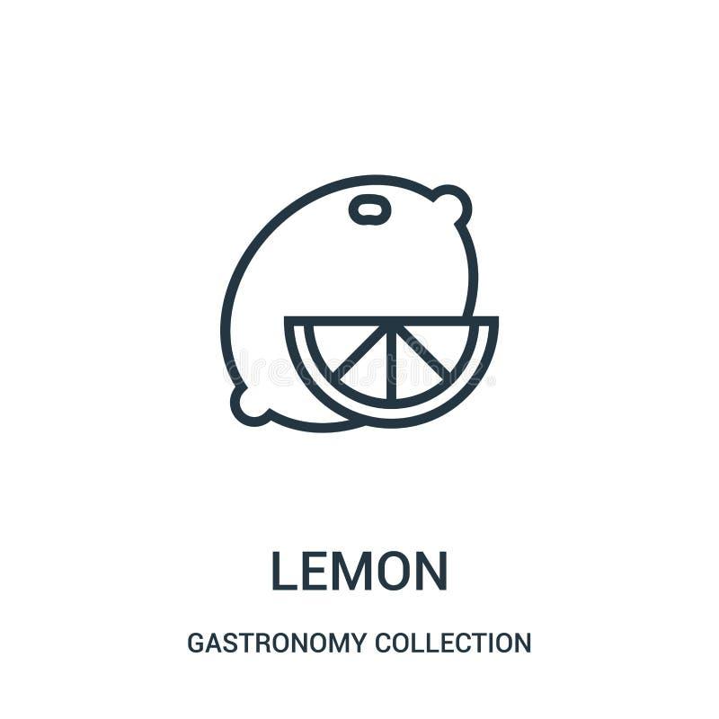 柠檬从美食术汇集汇集的象传染媒介 稀薄的线柠檬概述象传染媒介例证 向量例证