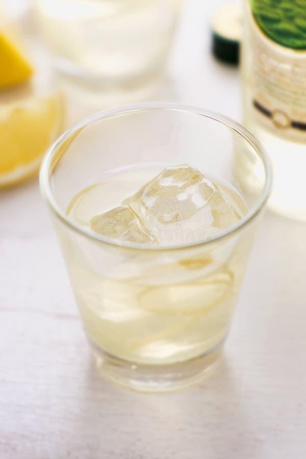 柠檬伏特加酒饮料 免版税库存图片