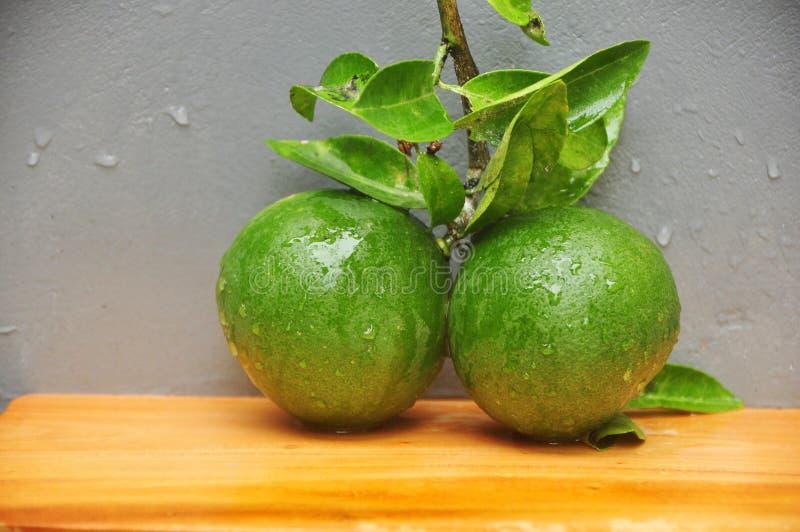 柠檬和叶子 免版税库存图片