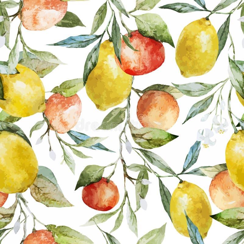 柠檬和桔子 皇族释放例证