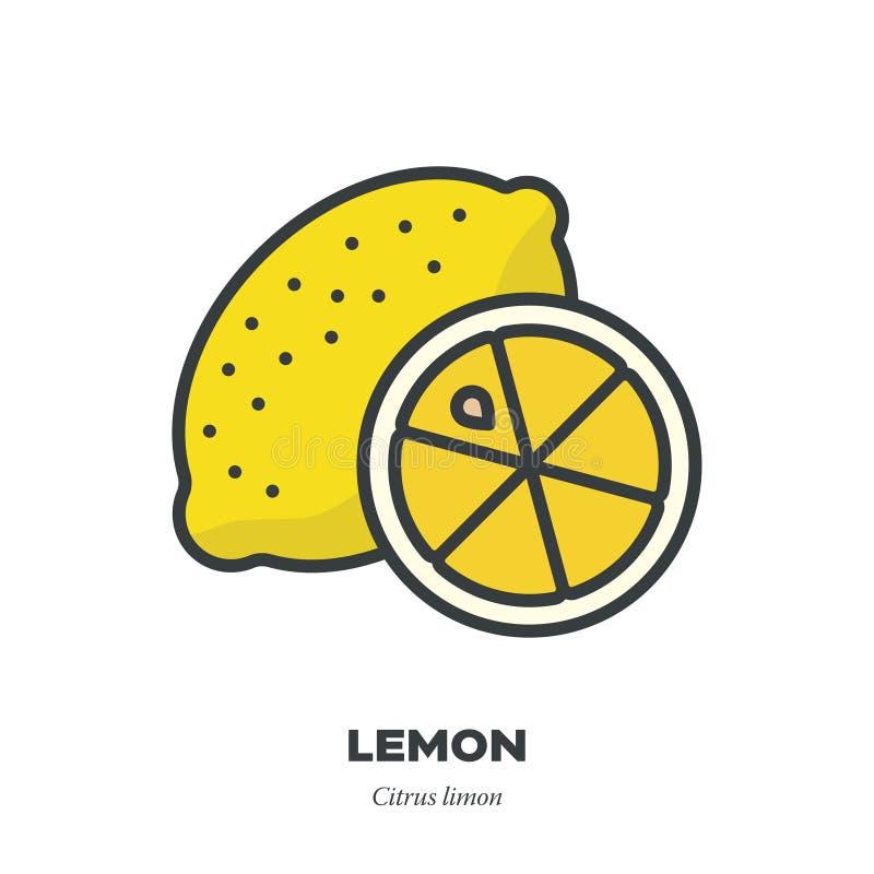 柠檬果子象,填装了概述样式传染媒介 向量例证