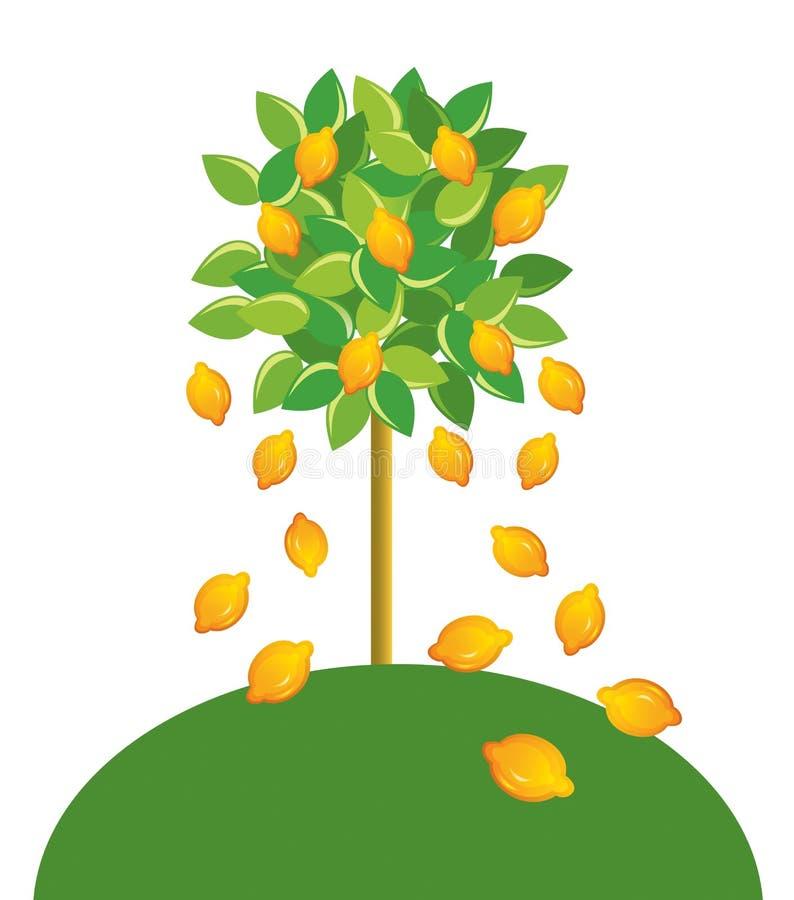 柠檬树 库存例证