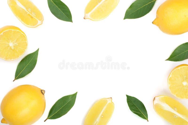 柠檬框架与叶子的在与拷贝空间的白色背景您的文本的 平的位置,顶视图 图库摄影