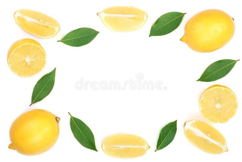 柠檬框架与在与拷贝空间的白色背景隔绝的叶子的您的文本的 平的位置,顶视图 免版税库存照片