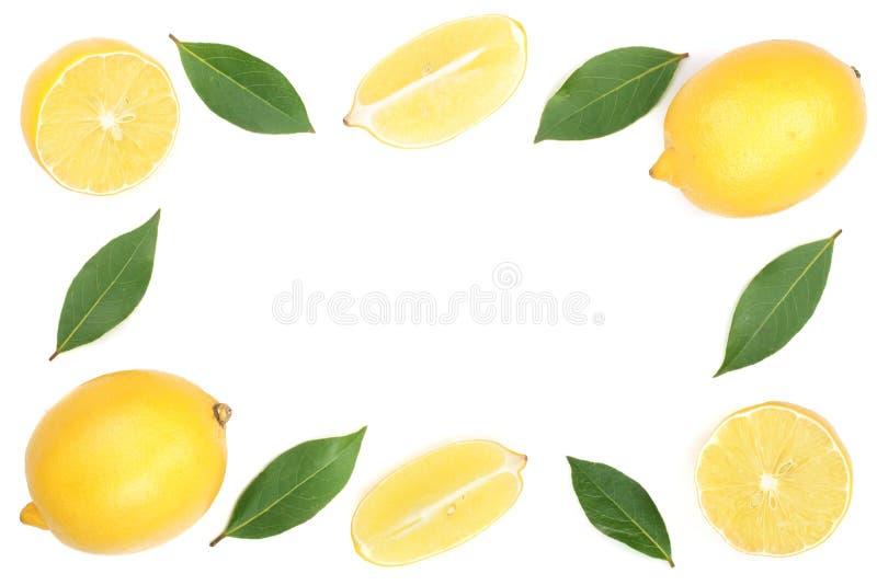 柠檬框架与在与拷贝空间的白色背景隔绝的叶子的您的文本的 平的位置,顶视图 库存图片