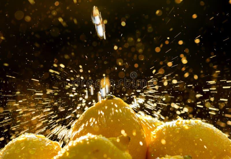 柠檬浪花 库存照片