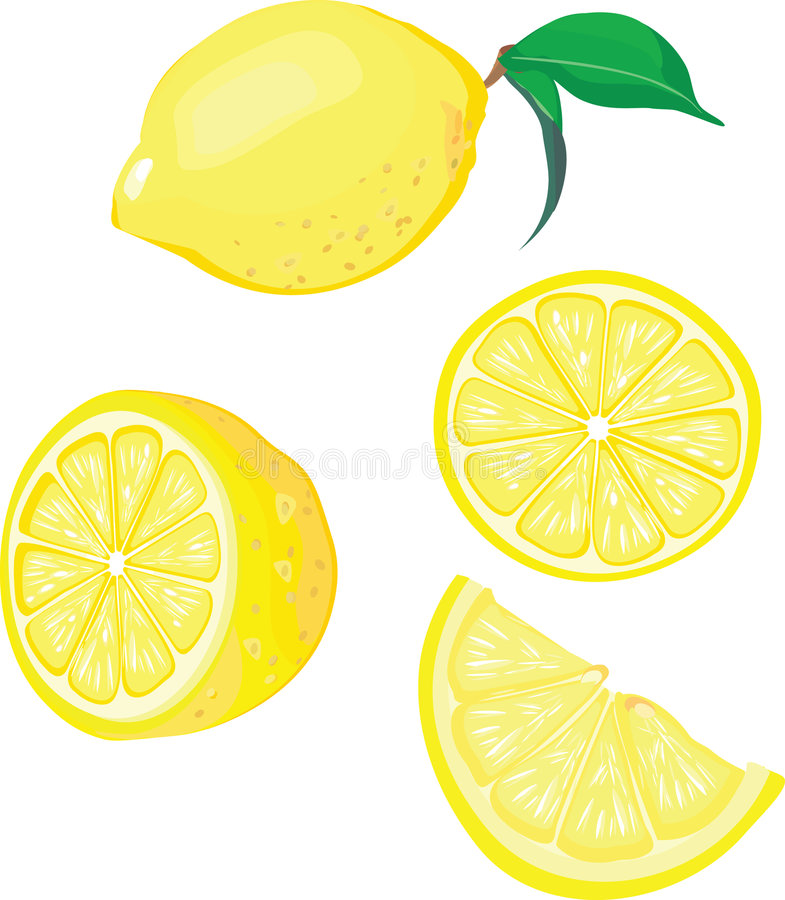 柠檬混合 向量例证