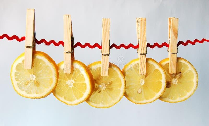 柠檬碎片 免版税库存图片