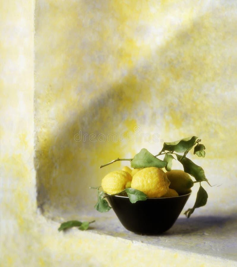 柠檬篮子  图库摄影