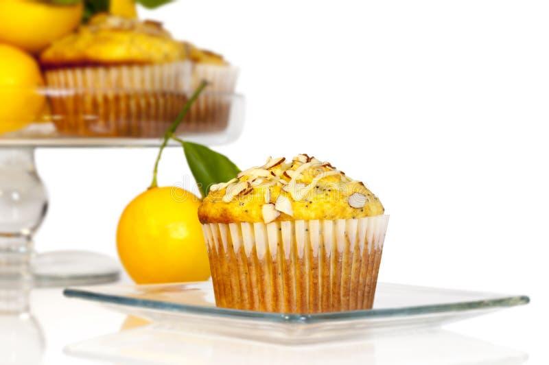 柠檬罂粟的种子松饼 免版税图库摄影