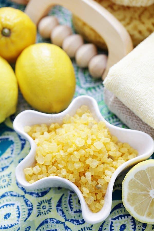柠檬腌制槽用食盐 库存图片