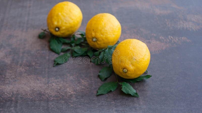 柠檬黄色 免版税库存图片