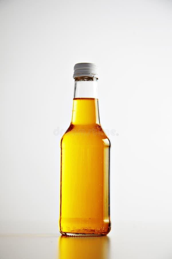 柠檬水,与冰大模型夏天集合的鸡尾酒 免版税库存照片