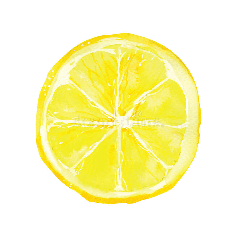 柠檬 库存例证