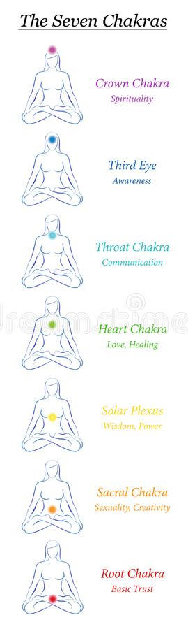 查克拉七标志女性身体瑜伽能量书签 库存例证
